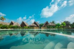 NEW JAMBO BUNGALOWS