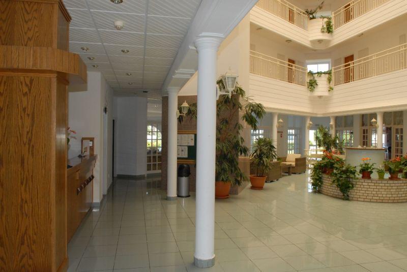 отель маистрали кипр фото отеля описание чудесное животное порой